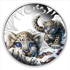 2016 50c The Cubs -Snow Leopard Cubs