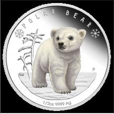 2017 50c Polar Babies - Polar Bear
