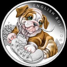 2018 50c Puppies - English Bulldog