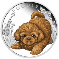 2018 50c Puppies - Poodle Silver Proof